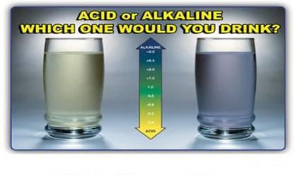 acidoralkaline.jpg